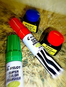 pilot super color markers 2.JPG